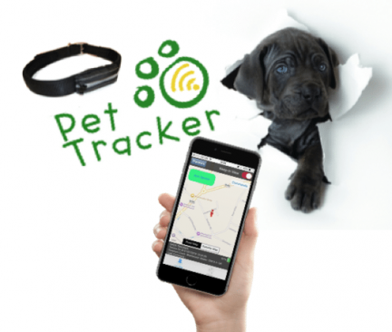 THE BEST GPS PET TRACKER IN THE UK